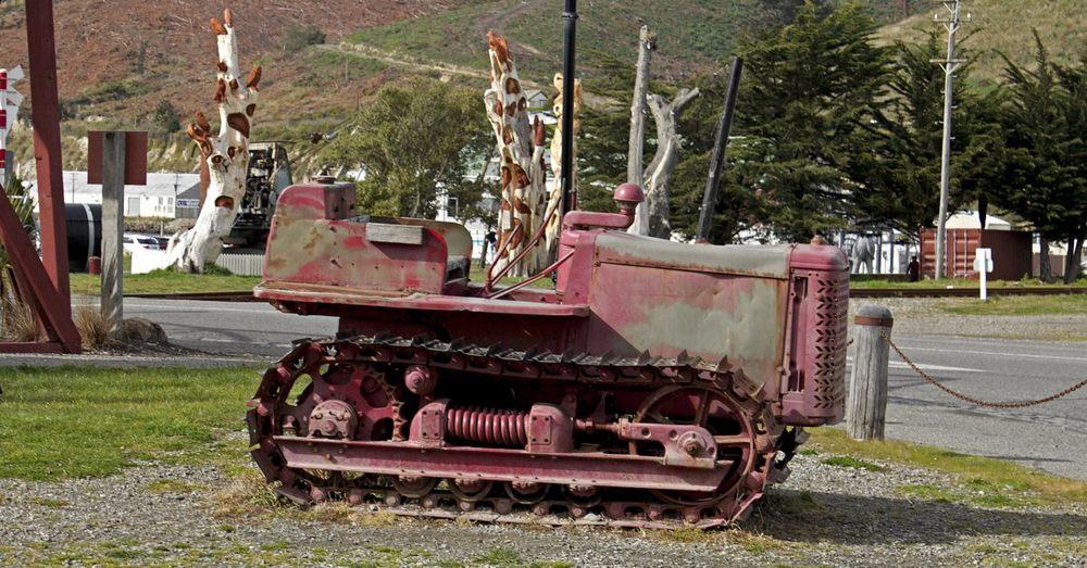 NZ184.jpg