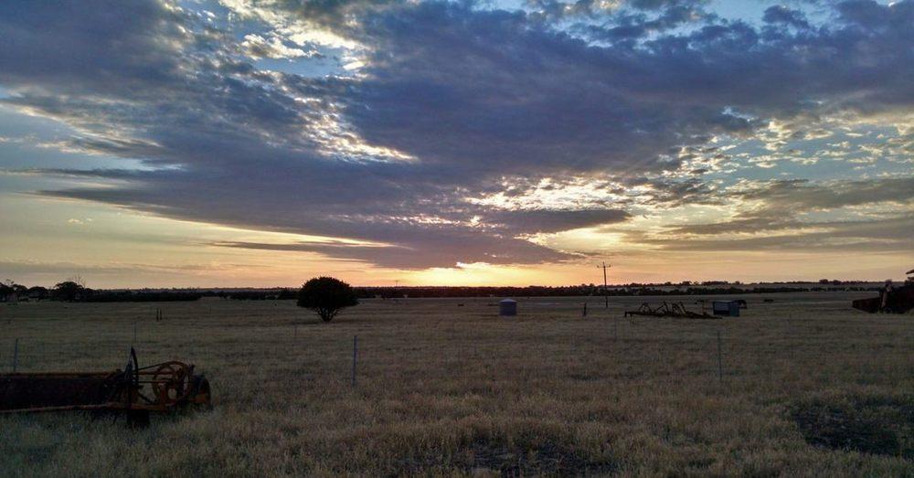 Sunset on a farm in Western Australia.