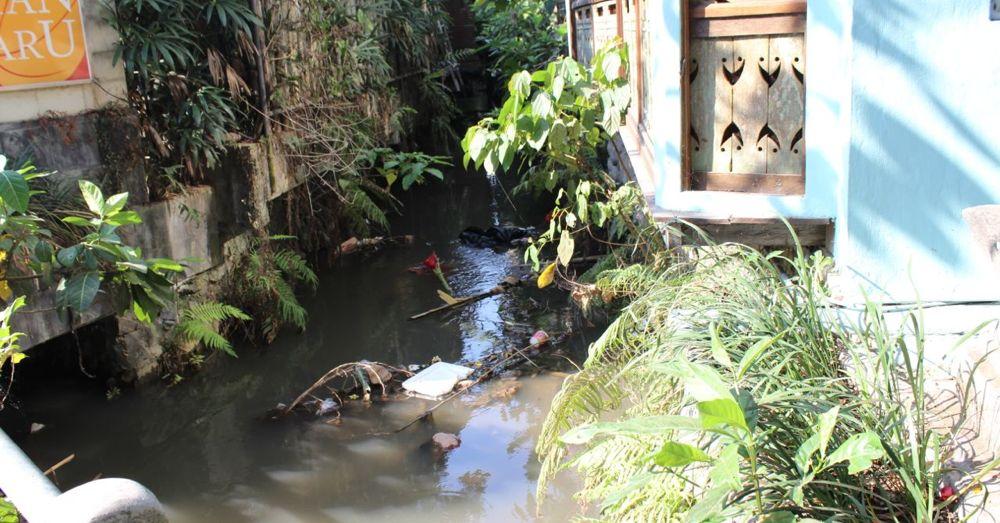 Dark side of paradise: trash is strewn everywhere.