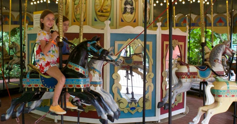 Perth Zoo: Carousel