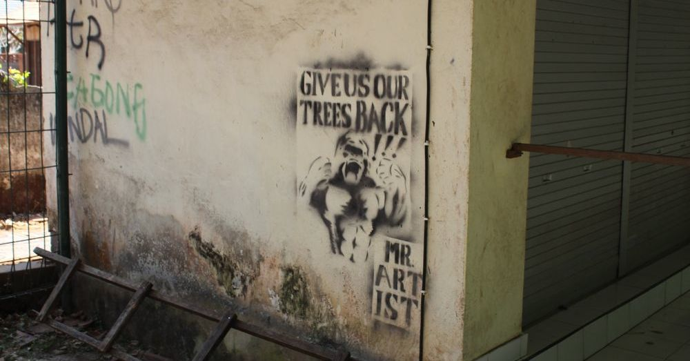 Give us back our trees.