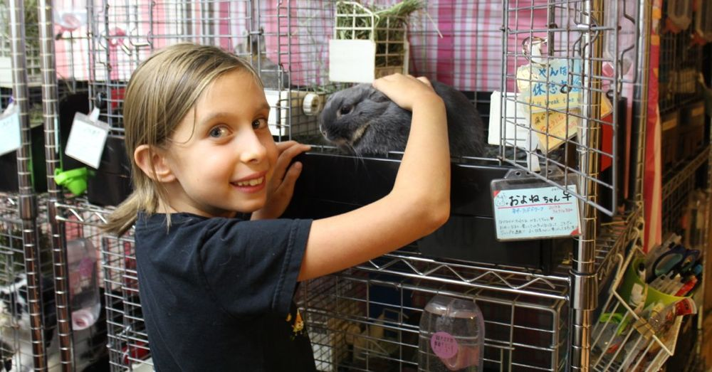 raagf-rabbit-in-cage.jpg