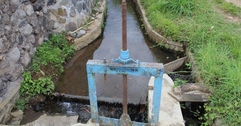 Subak in effect at Jatiluwih