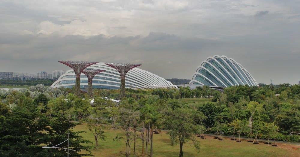 Singapore-20.jpg