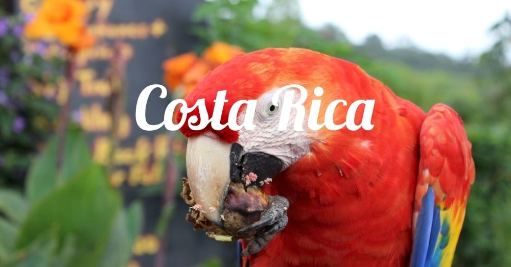 costa-rica-destination.jpg