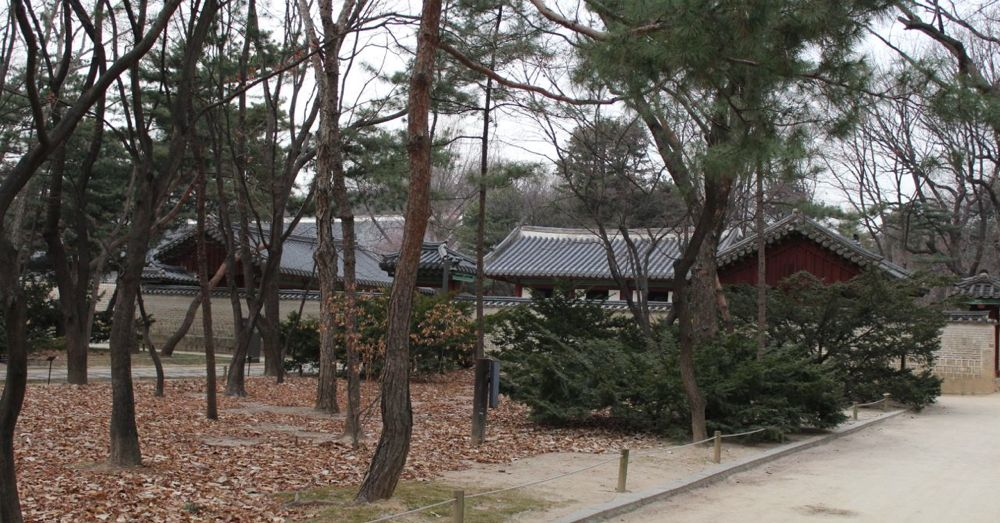 Jongmyo Shrine Grounds