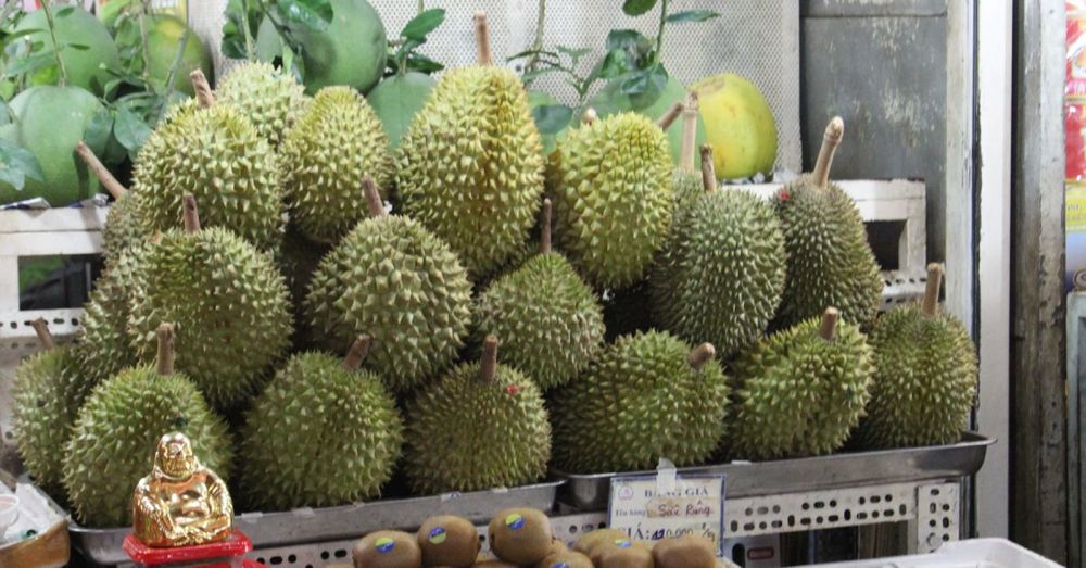 That's a lot of durians. Too many durians.