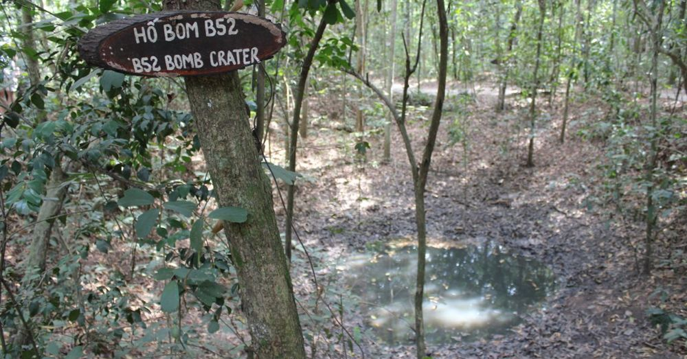 A B-52 bomb crater among the trees.