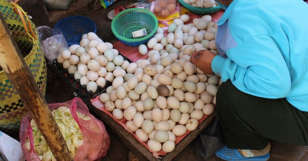 Eggs at a Cambodian market.