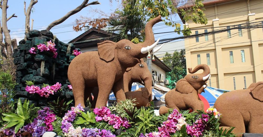 Elephants are big in Thailand.