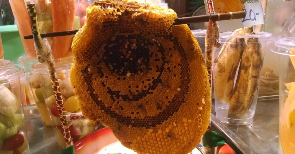 Honeycomb on display at the Sunday Walking Market.