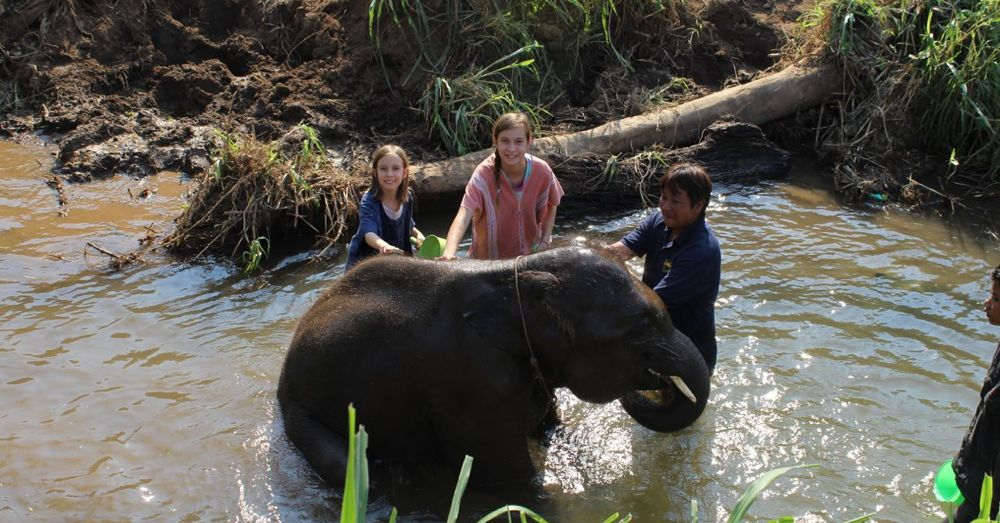 In the river, bathing an elephant.
