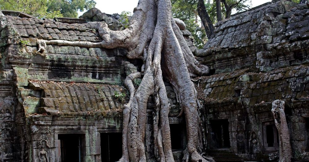 Ta Prohm Icon