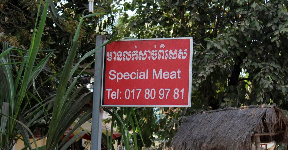 Special Meat
