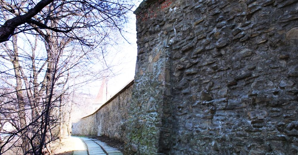The wall of Sighisoara.