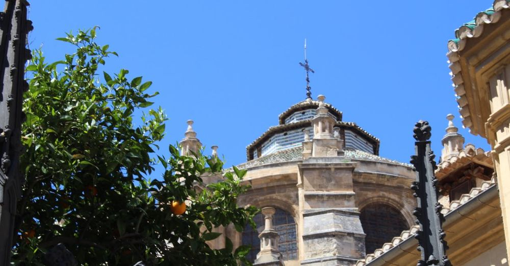 Orange tree with the Granada Cathedral dome.