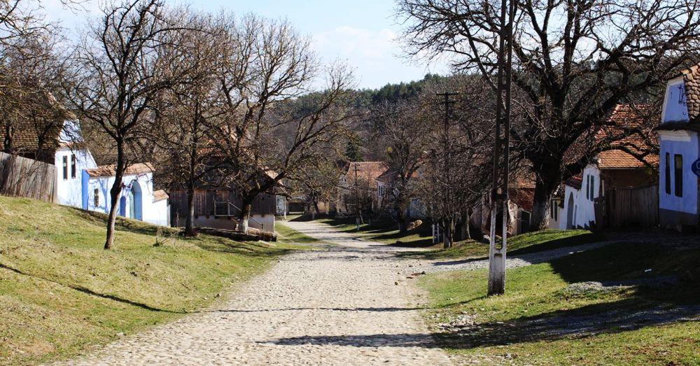 Viscri Street