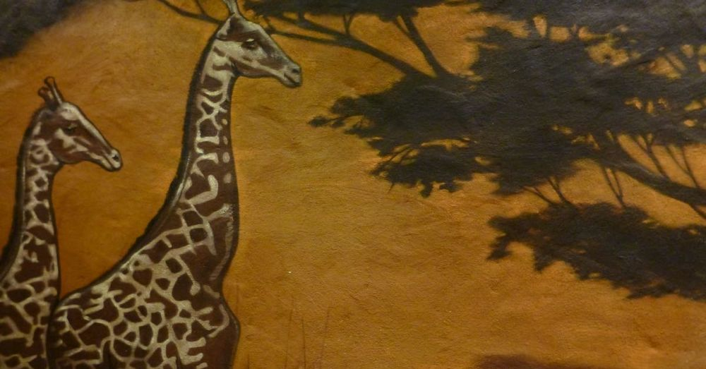 Giraffes on the Wall