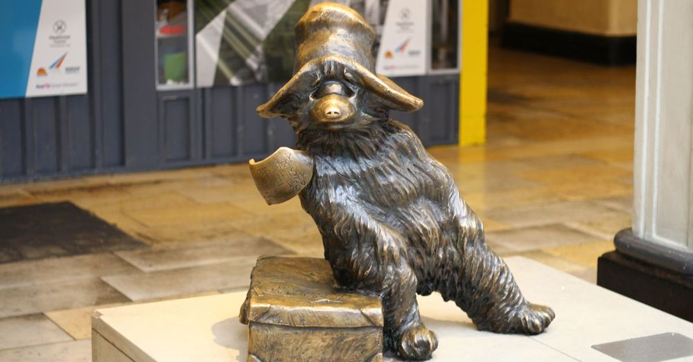 The original Paddington Bear: He's there if you know where to look.