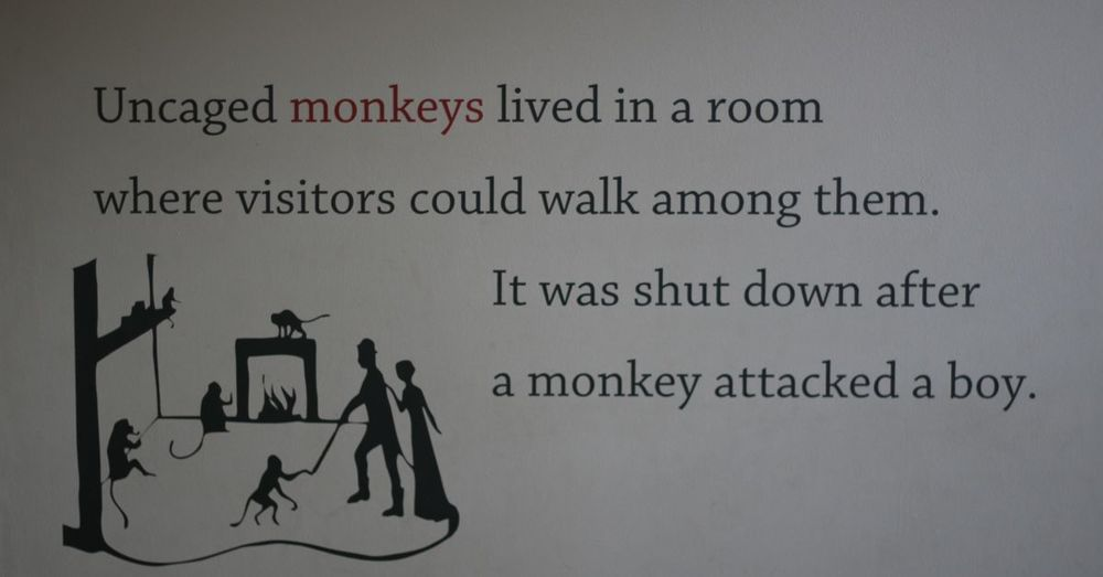 Monkeys ruin everything.