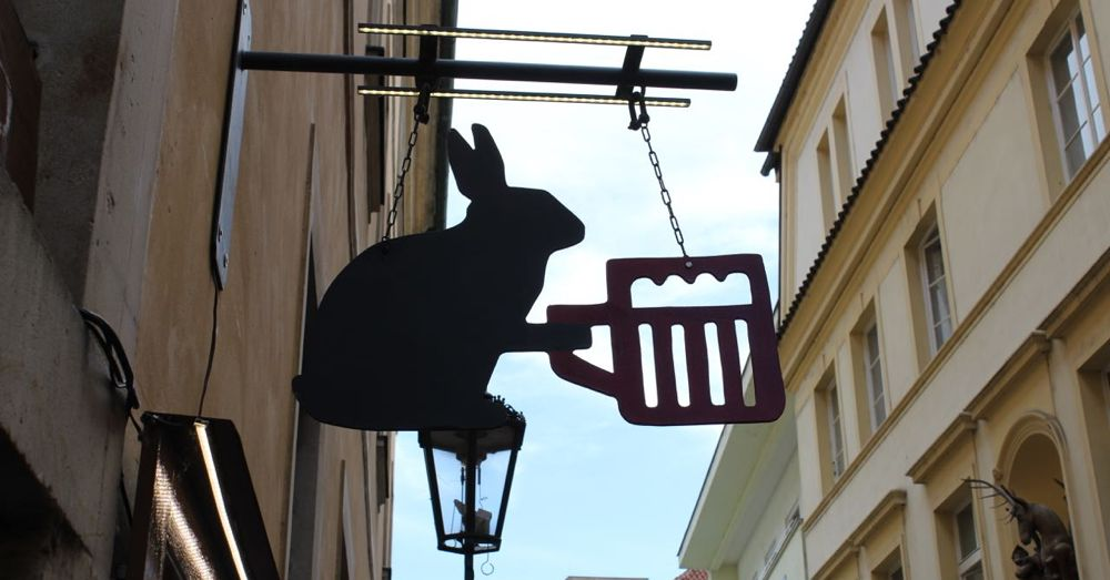 Rabbit Serving Beer