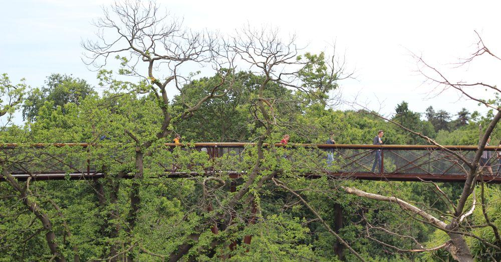 The Treetop Walkway in Kew Gardens.