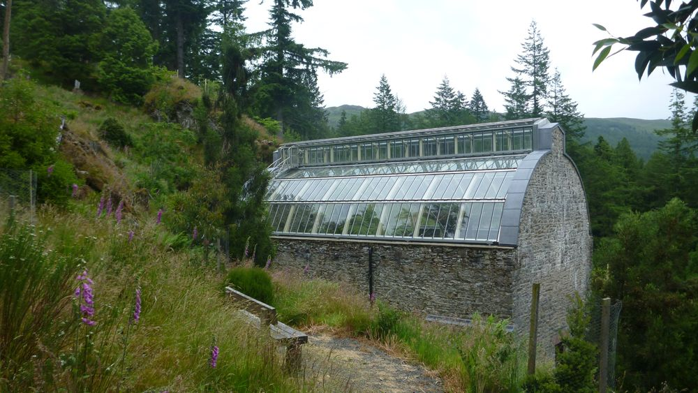 Victorian Fernery at Benmore Botanic Garden