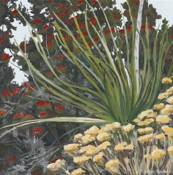 Yucca, Sumac and Seeds.jpg