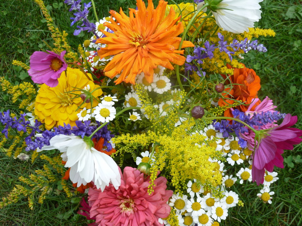 Subscriptions for fresh seasonal flower bouquets delivered to home ...