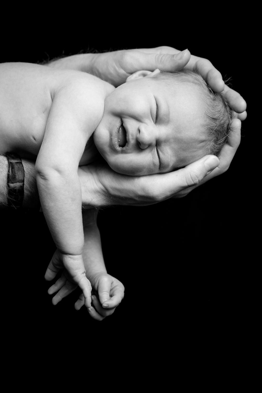 christian de zottis baby