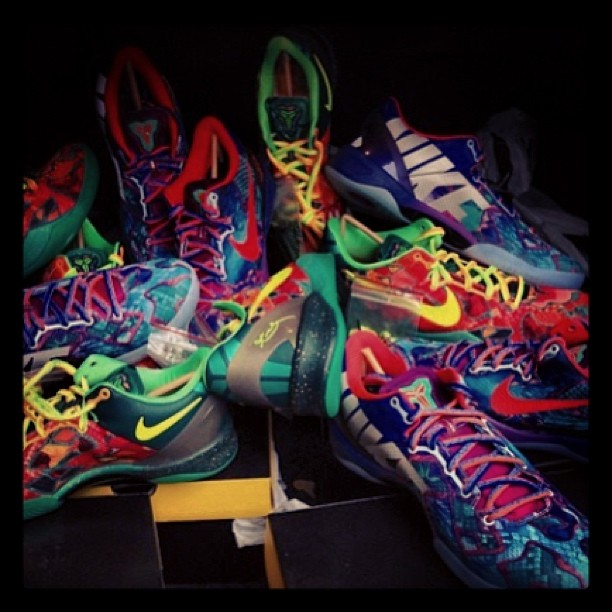 FOR SALE : @Nike What the Kobe 8 hitting WWW.HAWKANDHUNTER.COM later today  #nike #kobe #kobe8 #whatthekobe #whatthekobes #whatthekobe8 #kicksonfire #kicksoftheday #kicks #sneakernews #sneakeryeti #sneakersforsale #sneakermarketplace #basketball #blackmamba #lakers #crepecity #crookedtongues #crepecheck #sneakernews #modernnotoriety #jordan #huarache #huarachele #complexkicks