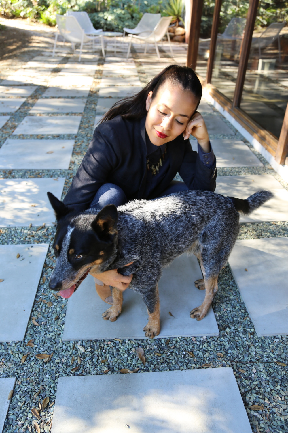arrow-the-heeler-los-angeles.jpg