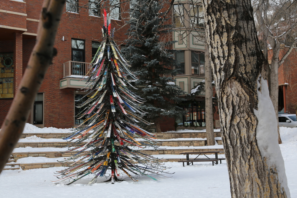 TELLURIDE-COLORADO-SCENERY-SKI-TREE.JPG