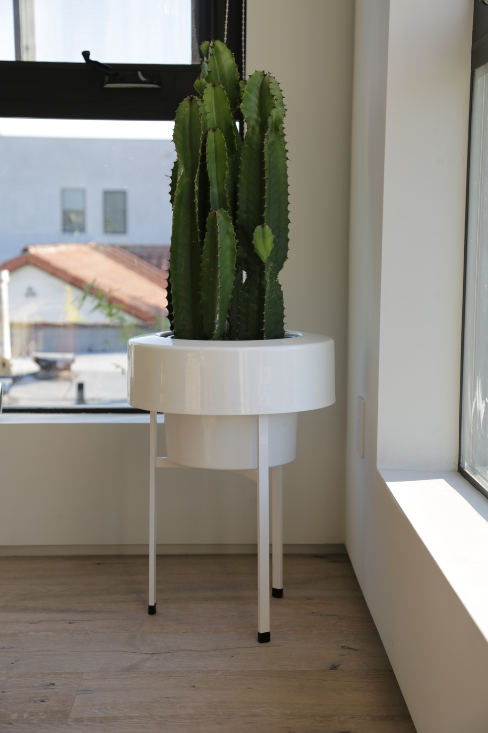 VANESSA-BELETIC-INTERIOR-PADS-MODERN-PLANTER.JPG