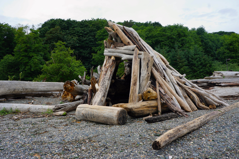 Driftwood teepee fort at the Point Robinson Lighthouse | Maury Island