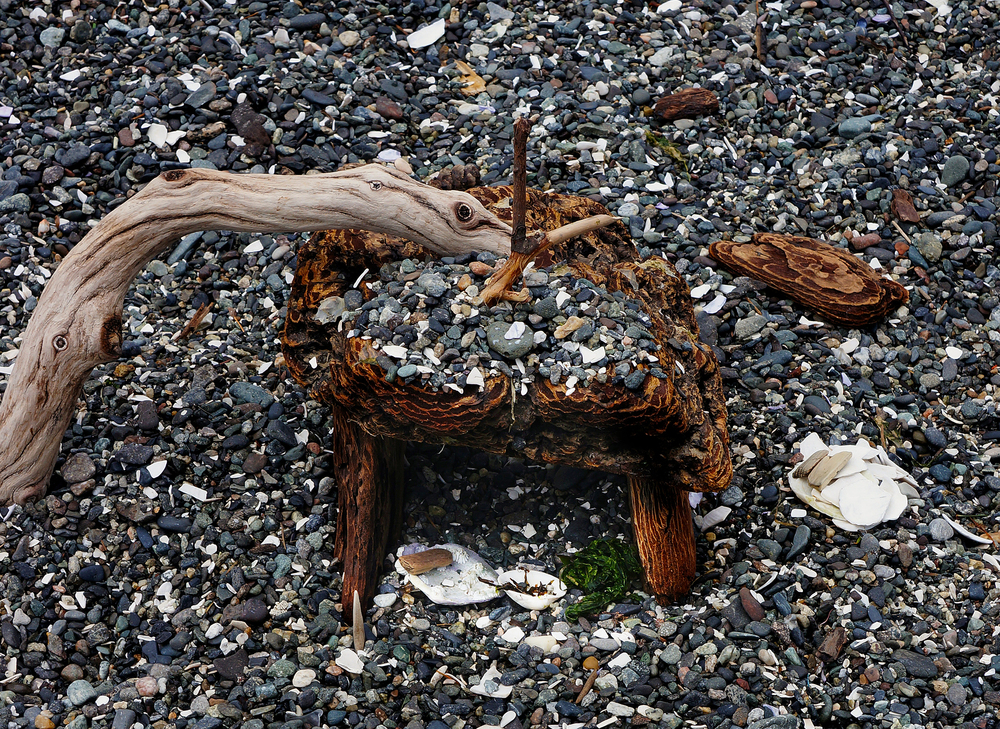 A driftwood sea serpent checks out a fairy house on Fishing Bay's beach | Orcas Island
