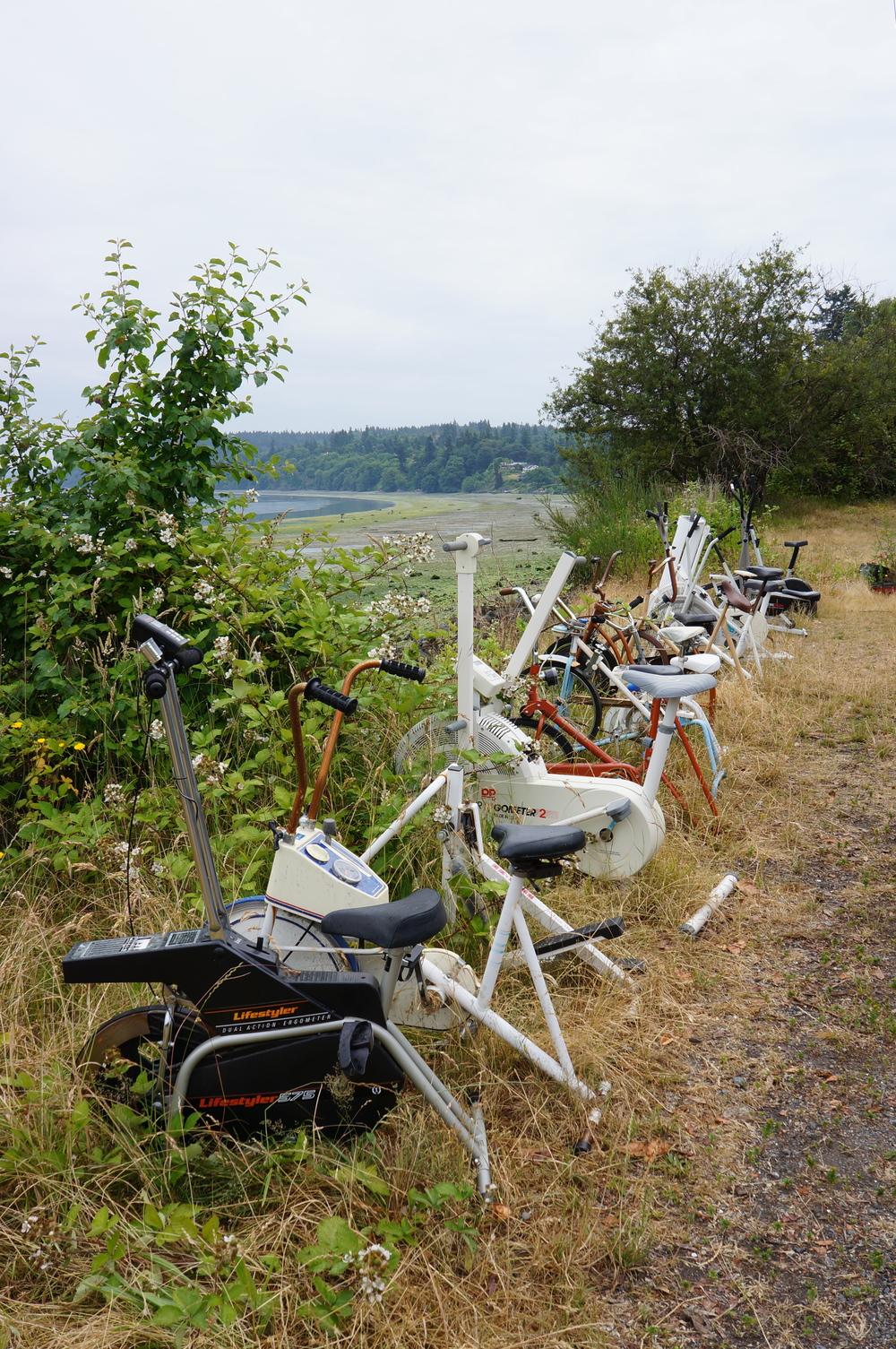IOA_Vashon_Excercise_Bikes.jpg