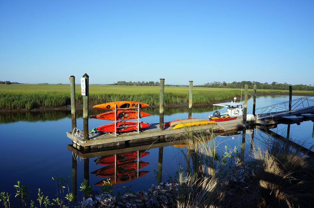 IOA_LSSI_Kayaks.jpg