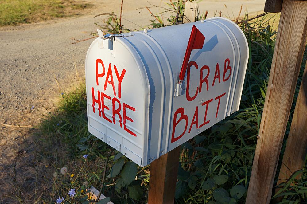 IOA_Burgard_Orcas_CrabBait.jpg