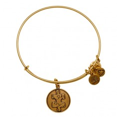 Piece of the Puzzle Charm Bangle  National Autism Association  Individuality • Discovery • Unity  $28.00