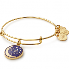 Stellar Love Charm Bangle  Edesia  Love • Nourish • Infinity   $28.00