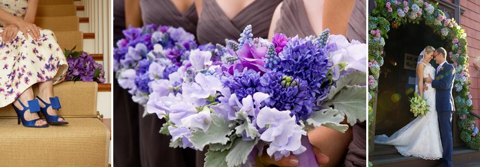 purple-header.jpg