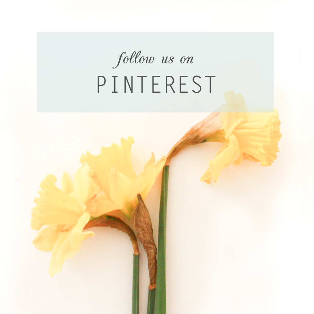 FOLLOW-US-ON-PINTEREST.png