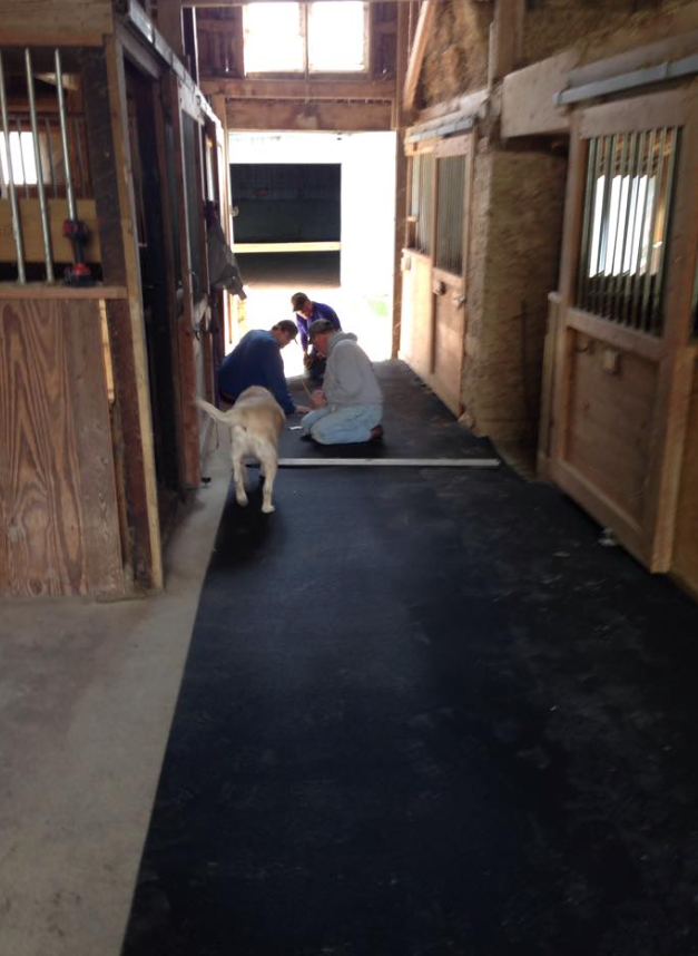 Installing new rubber mat flooring in the main barn. Made possible by a generous grant from The Greene County Community Foundation.