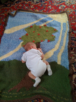 H. enjoying the Pictorial Blanket for the first time.