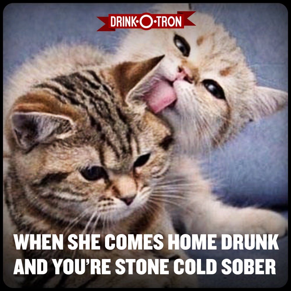 37_drinkotron drunk sober club cat meme?format=500w drunk memes drink o tron