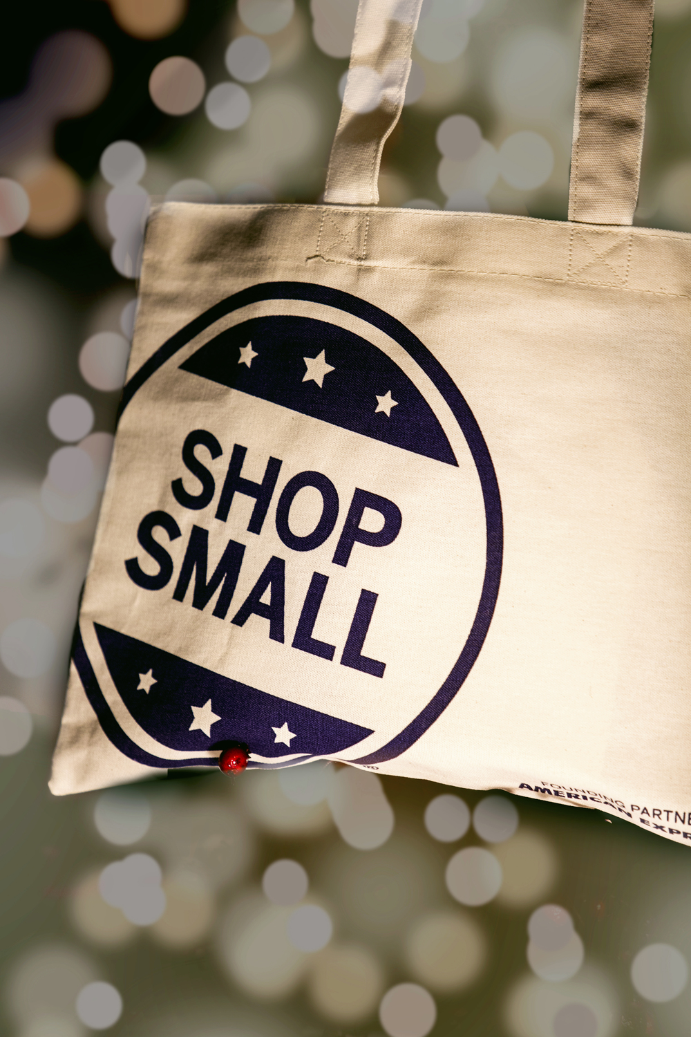 SMALL BUSINESS SATURDAY PARTICIPATING SHOPS IN NJ AND NYC PHOTOGRAPHER BOUDOIR
