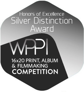silver-distinction-wppi-badge.jpeg