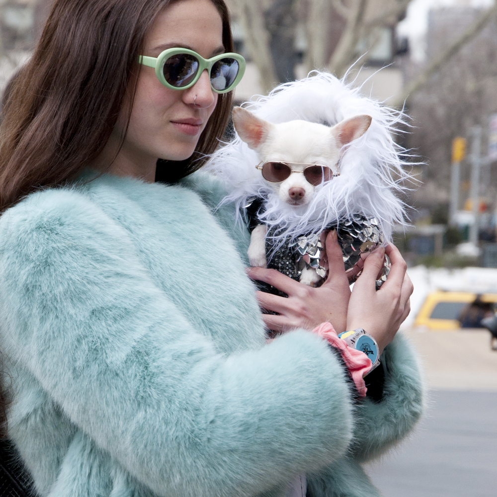 "Sammy Riley wearing a coat by Zara and a watch by Swatch with Anthony Rubio's fluffy fashionista ""Kimba"""