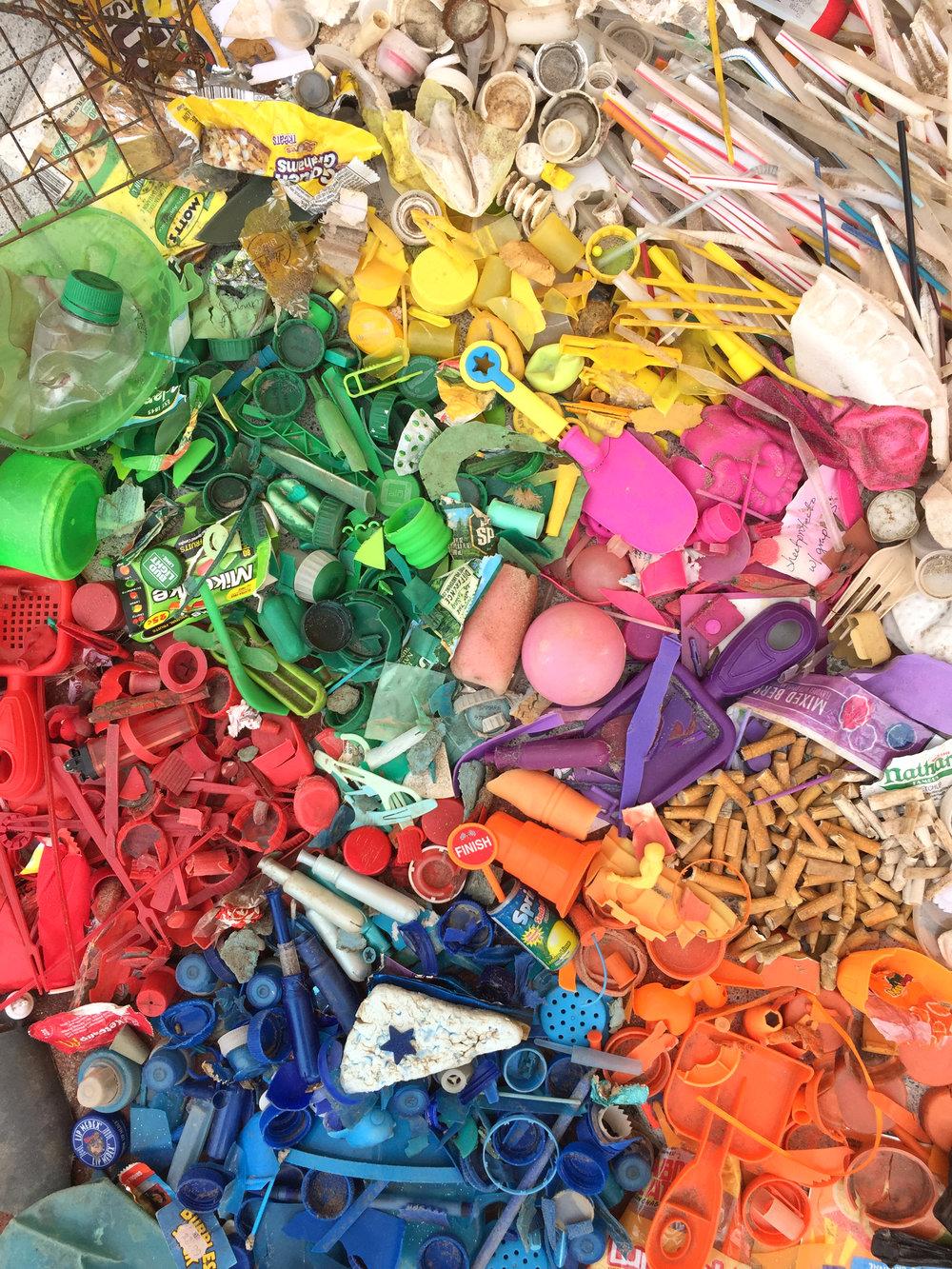 amy_chen_design_beach_clean_coney_island_rainbow_litter.JPG